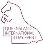 QI3DE Logo